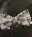 motylik 5
